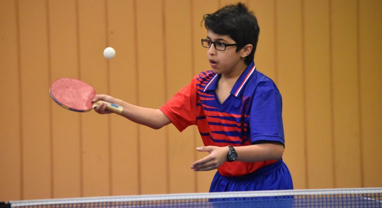 2019 CSW Individual Regional Table Tennis